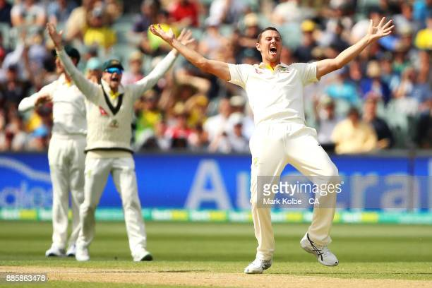 Josh Hazlewood of Australia unsuccessfully appeals for the wicket of Alastair Cook of England during day four of the Second Test match during the...