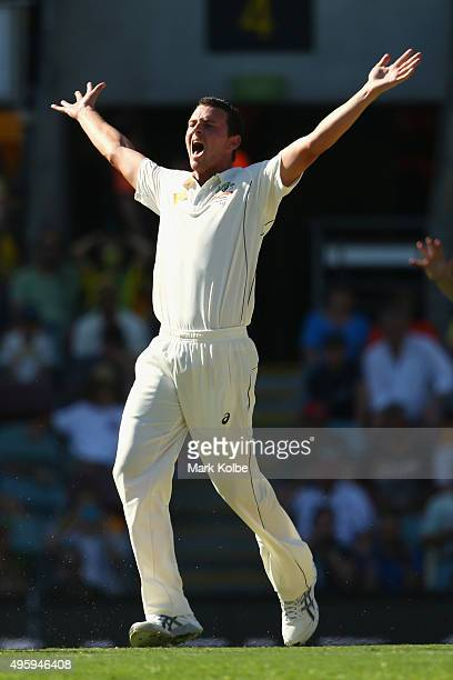 Josh Hazlewood of Australia unsucessfully appeals for the wicket of Kane Williamson of New Zealand during day two of the First Test match between...