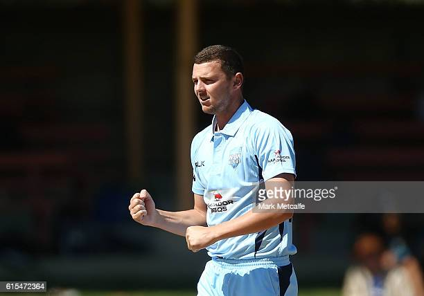 Josh Hazlewood of the Blues celebrates taking the wicket of Hilton Cartwright of the Warriors during the Matador BBQs One Day Cup match between New...