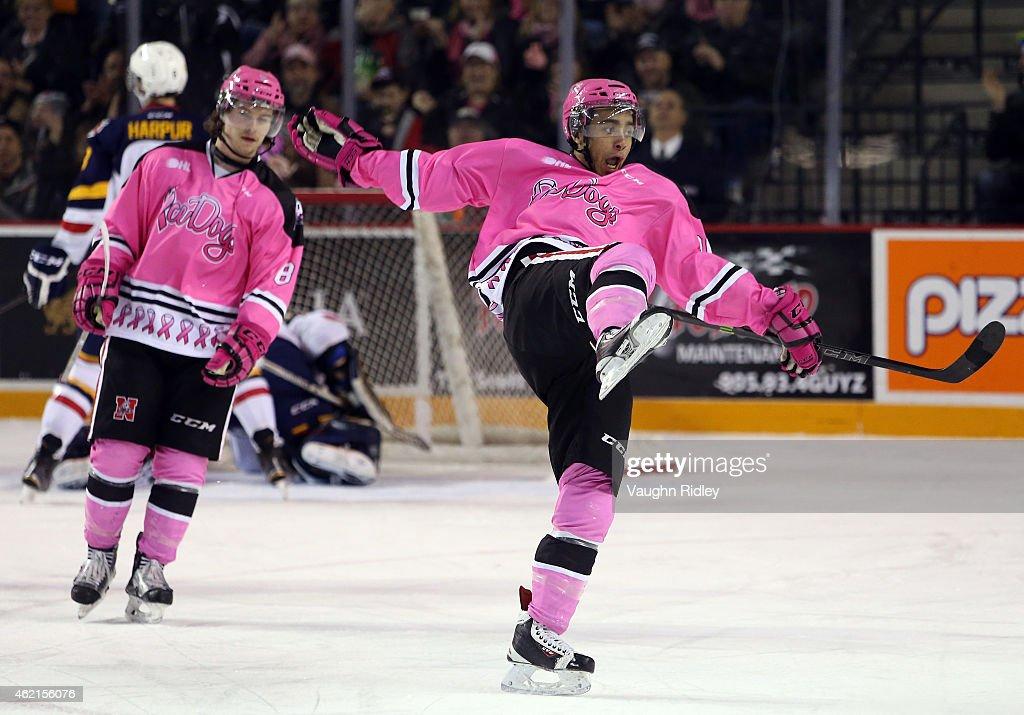 Barrie Colts v Niagara IceDogs : News Photo