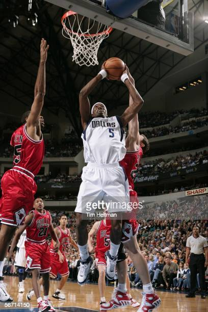 Josh Howard of the Dallas Mavericks takes a rebound against the Chicago Bulls January 31 2006 at American Airlines Center in Dallas Texas NOTE TO...
