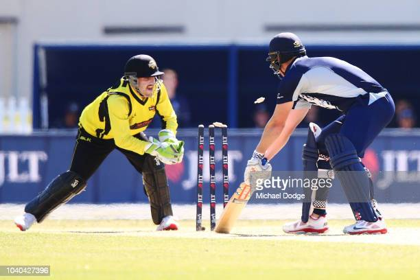 Josh Inglis of Western Australia stumps Cameron White of Victoria during the JLT One Day Cup between Victoria and Western Australia at Junction Oval...