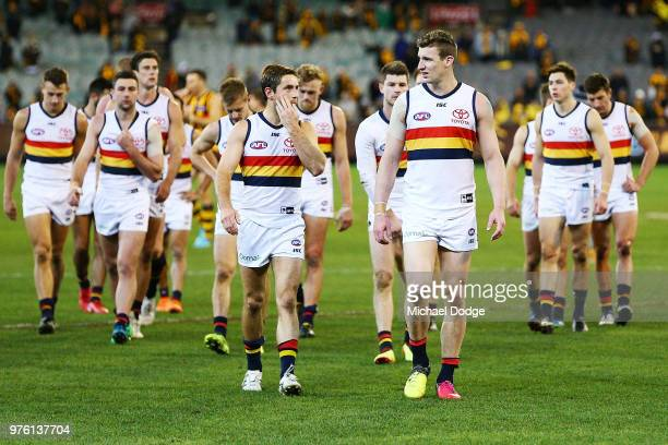 Josh Jenkins of the Crows looks dejected after defeat during the round 13 AFL match between the Hawthorn Hawks and the Adelaide Crows at Melbourne...