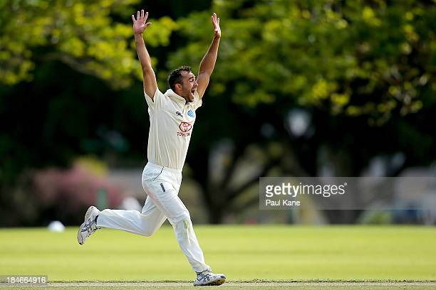 Josh Lalor of New South Wales celebrates the wicket of Tom Beaton of Western Australia during day two of the Futures League match between Western...