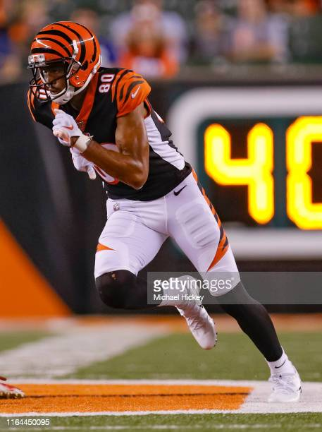 Josh Malone of the Cincinnati Bengals is seee during the preseason game against the New York Giants at Paul Brown Stadium on August 22, 2019 in...