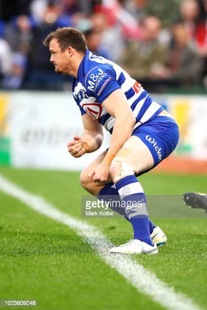 Josh Morris of the Bulldogs celebrates scoring a try during the round 24 NRL match between the St George Illawarra Dragons and the Canterbury...
