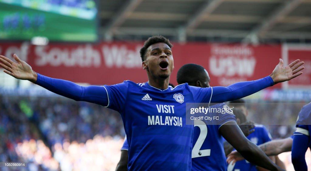 Cardiff City v Fulham FC - Premier League : News Photo