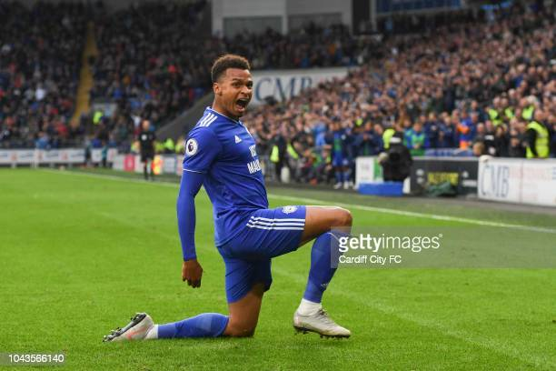 Josh Murphy of Cardiff City celebrates a goal during the Premier League match between Cardiff City and Burnley FC at Cardiff City Stadium on...