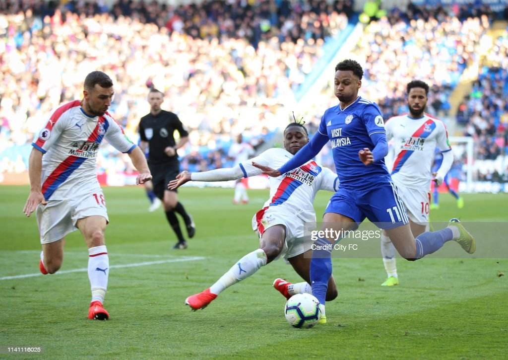 Cardiff City v Crystal Palace - Premier League : News Photo