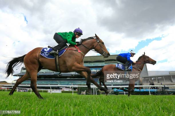 Josh Parr on In Flanders wins heat 10 from Rachel King on Missouri Waltz during the barrier trials on the Kensington track at Royal Randwick...