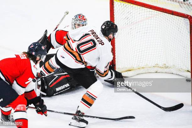 Josh Prokop of the Calgary Hitmen scores on the net of Carl Tetachuk of the Lethbridge Hurricanes during a WHL game at Seven Chiefs Sportsplex on...