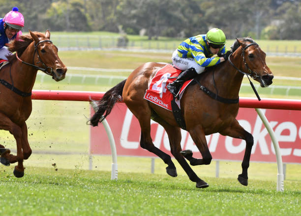 AUS: Melbourne Racing: Sandown