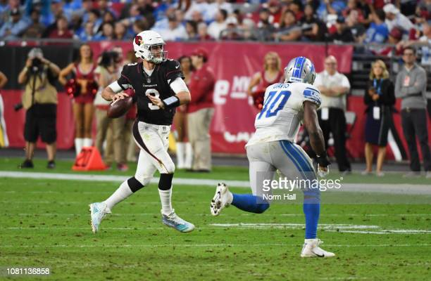 Josh Rosen of the Arizona Cardinals looks to throw the ball against the Detroit Lions at State Farm Stadium on December 09 2018 in Glendale Arizona