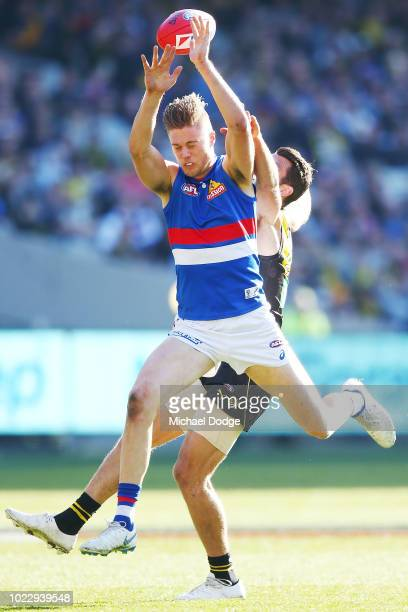 Josh Schache of the Bulldogs competes for the ball against Alex Rance of the Tigers during the round 23 AFL match between the Richmond Tigers and the...