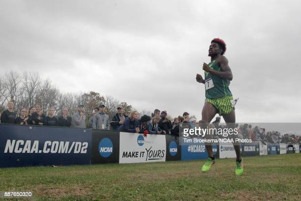 Joshua Joseph of Adams State University runs to the finish line during the Division II Men's Cross Country Championship held at the Angel Mounds on...
