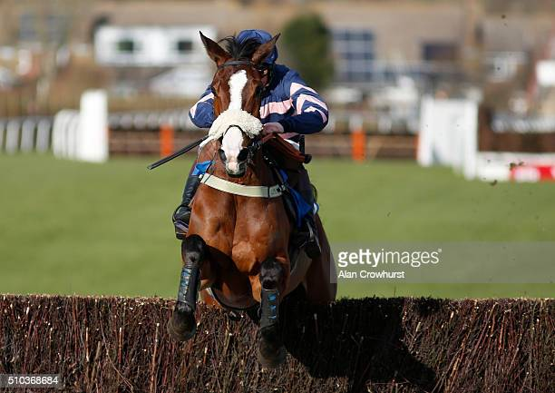 Joshua Moore riding Ar Mad clear the last to win The Download The At The Races App Novices' Limited Handicap Steeple Chase at Plumpton racecourse on...
