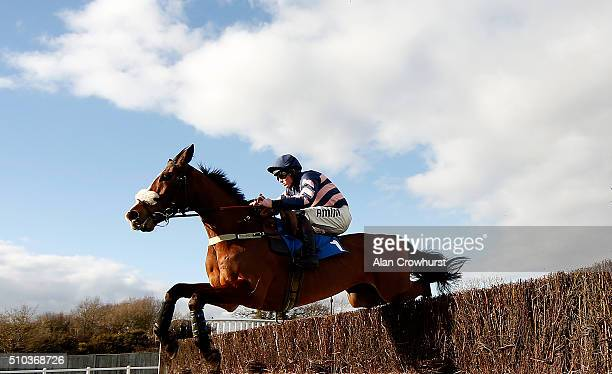 Joshua Moore riding Ar Mad on their way to winning The Download The At The Races App Novices' Limited Handicap Steeple Chase at Plumpton racecourse...