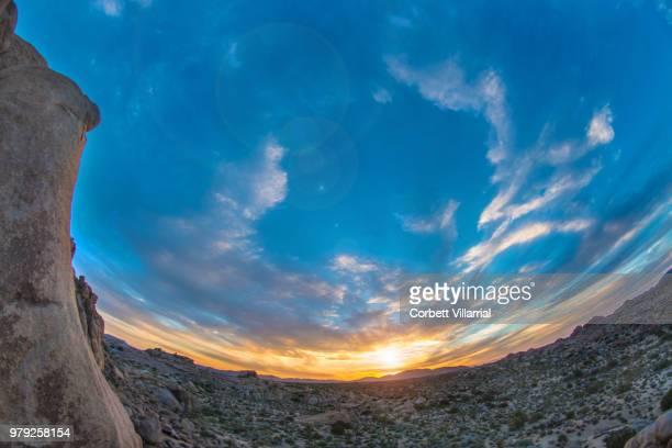 joshua tree sunsetting - 魚眼撮影 ストックフォトと画像