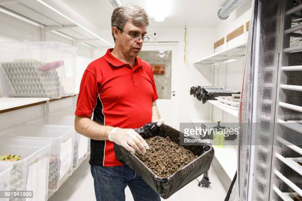 Jouko Siikonen farmer holds a box of cricket eggs on the Siikonen family farm in Forssa Finland on Tuesday June 26 2018 On their 500yearold homestead...
