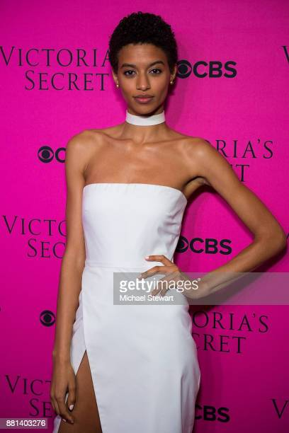 Jourdana Phillips attends the 2017 Victoria's Secret Fashion Show viewing party pink carpet at Spring Studios on November 28 2017 in New York City
