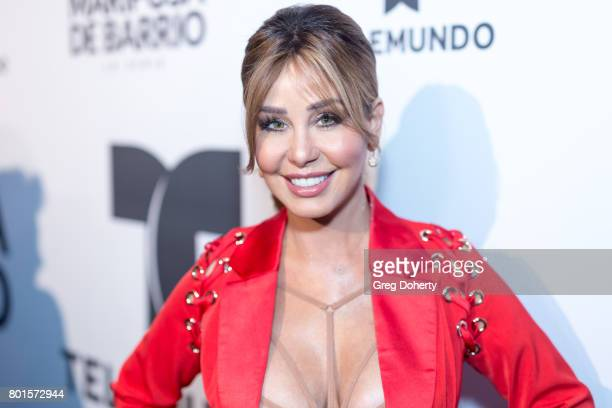 Journalist Myrka Dellanos arrives for the Screening Of Telemundo's Jenni Rivera Mariposa De Barrio at The GRAMMY Museum on June 26 2017 in Los...