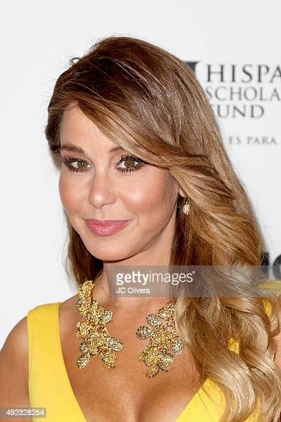 Journalist Myrka Dellanos attends the The Los Angeles Times and Hoy 2015 Latinos de Hoy Awards at Dolby Theatre on October 11 2015 in Hollywood...