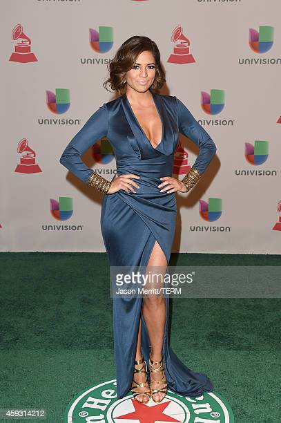 Journalist Pamela Silva attends the 15th Annual Latin GRAMMY Awards at the MGM Grand Garden Arena on November 20 2014 in Las Vegas Nevada