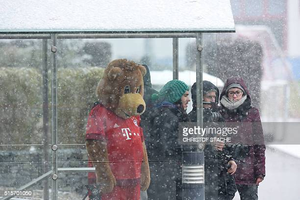 Journalists and the maskot of FC Bayern Munich 'Baerli' wait during heavy snow fall prior the last German Bundesliga first division football team FC...