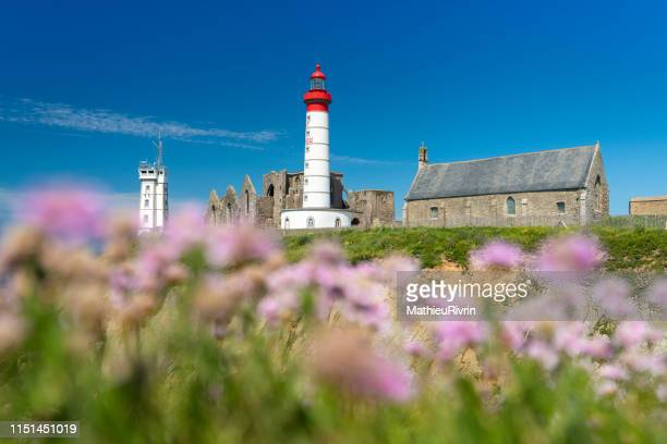 journée d'été à la pointe saint-mathieu en fleurs - brest brittany stock pictures, royalty-free photos & images