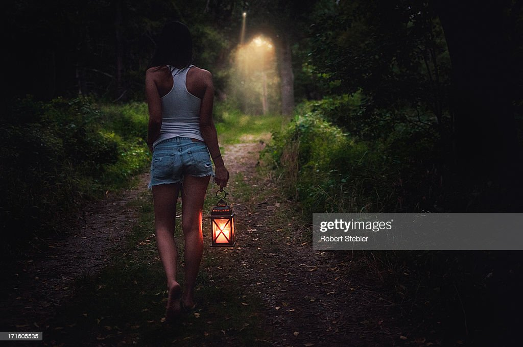 Journey through the woods : Stock Photo
