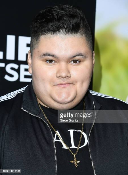Jovan Armand arrives at the Premiere Of Amazon Studios' Life Itself at ArcLight Cinerama Dome on September 13 2018 in Hollywood California