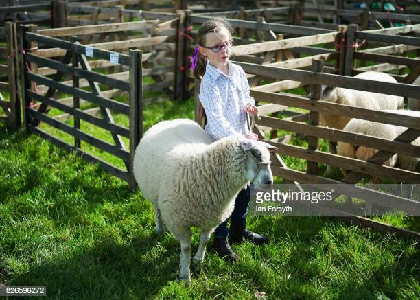 Jovi Wood from Stokesley walks her blue domain cross Texel sheep out of the pen during the Osmotherley Country Show on August 5, 2017 in Osmotherley,...