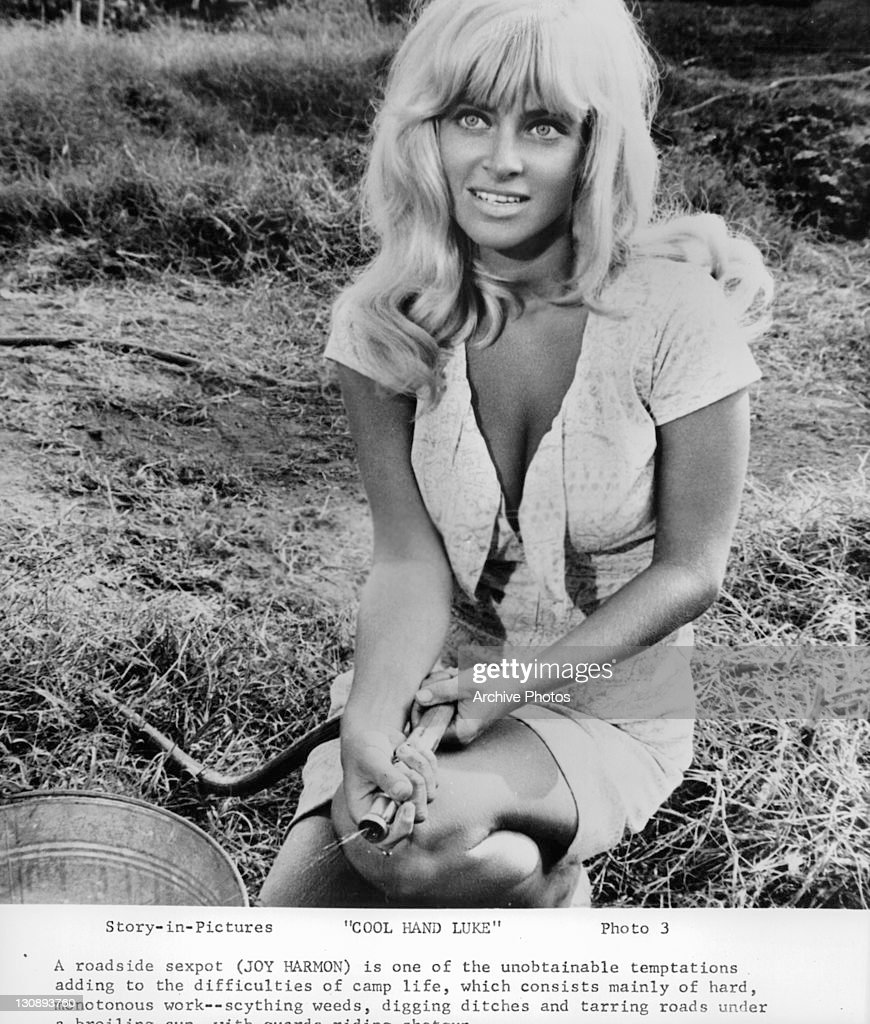 Joy Harmon nudes (41 foto and video), Tits, Fappening, Feet, braless 2017