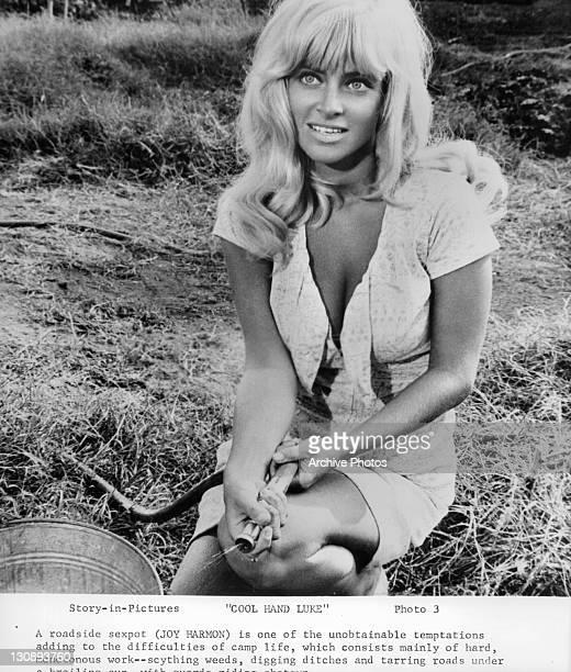 Joy Harmon waters lawn in a scene from the film 'Cool Hand Luke' 1967