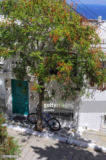 joy of spetses island, greece - spetses stock pictures, royalty-free photos & images