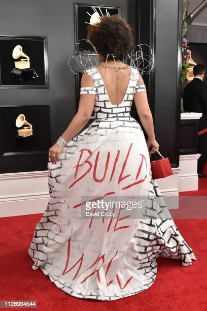 Joy Villa attends the 61st Annual Grammy Awards at Staples Center on February 10, 2019 in Los Angeles, California.