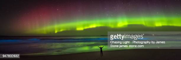 joyful figure in silhouette on the beach under an incredible aurora - bioluminescence stock pictures, royalty-free photos & images