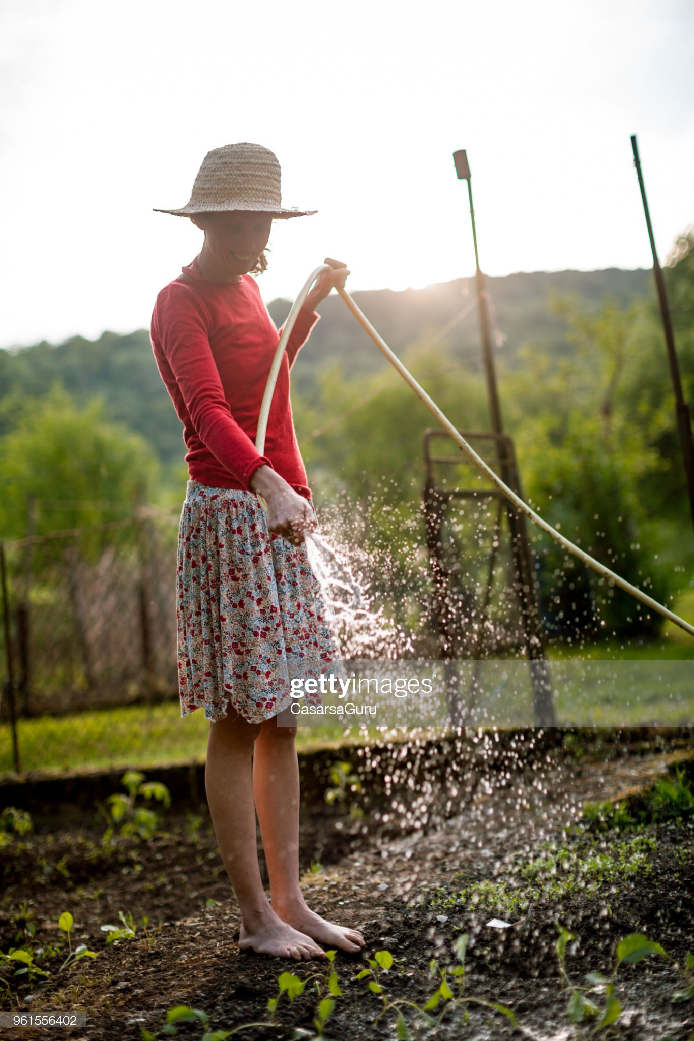 https://media.gettyimages.com/photos/joyful-woman-watering-vegetable-garden-at-the-sunset-picture-id961556402?s=2048x2048