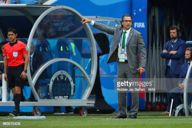 Juan Antonio Pizzi head coach / manager of Saudi Arabia gestures during the 2018 FIFA World Cup Russia group A match between Saudi Arabia and Egypt...