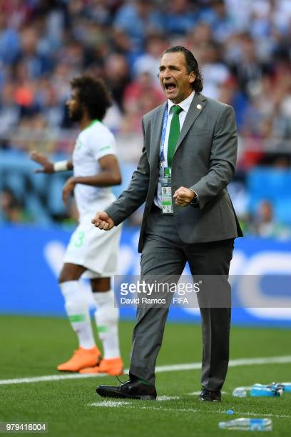 Juan Antonio Pizzi Head coach of Saudi Arabia reacts during the 2018 FIFA World Cup Russia group A match between Uruguay and Saudi Arabia at Rostov...
