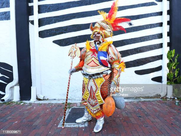 Juan Carlos Rincon poses in a traditional Carnival costume of the Dominican Republic during the annual Calle Ocho Festival in the Little Havana...