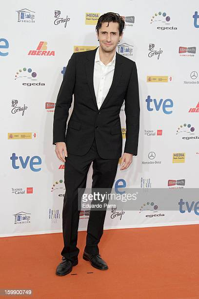 Juan DIego Botto attends Jose Maria Forque awards photocall at Canal theatre on January 22 2013 in Madrid Spain