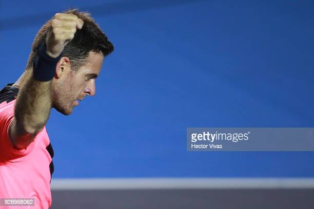 Juan Martin del Potro of Argentina celebrates during a semifinal match between Juan Martin del Potro of Argentina and Alexander Zverev of Germany as...
