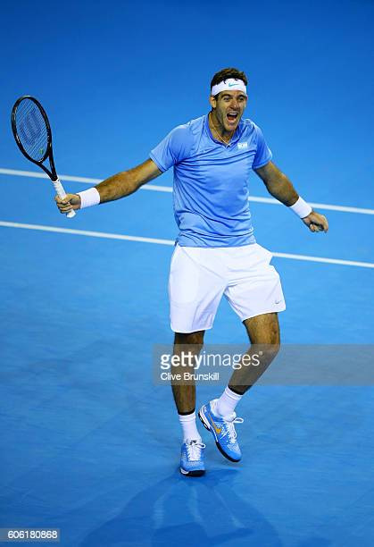 Juan Martin del Potro of Argentina celebrates match point during his singles match against Andy Murray of Great Britain during day one of the Davis...