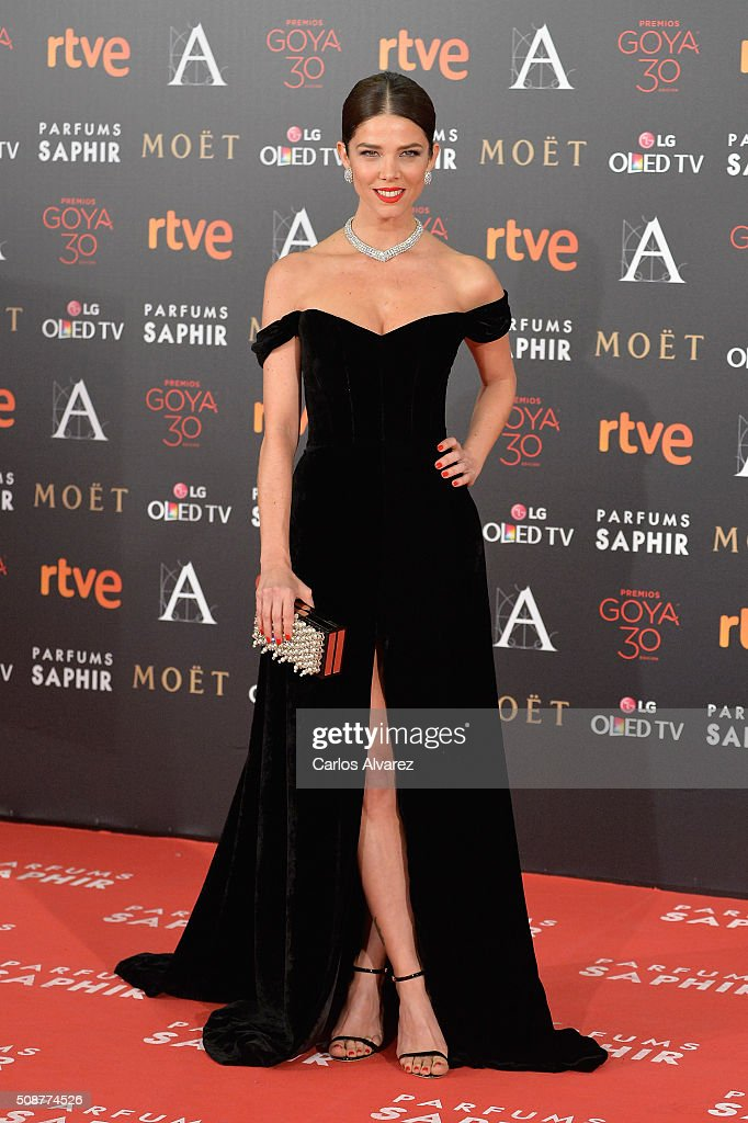 Goya Cinema Awards 2016 - Red Carpet