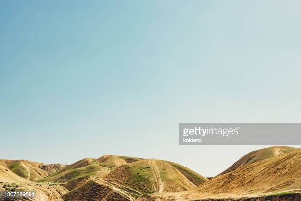 judean desert hills during springtime - midday stock pictures, royalty-free photos & images