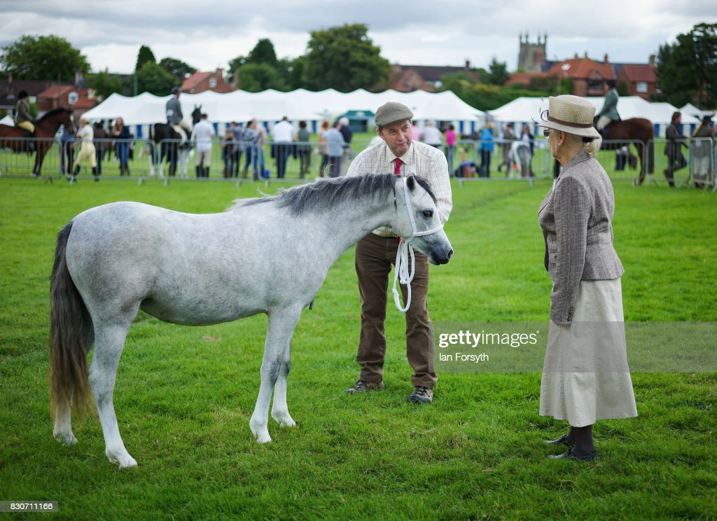 A judge assesses a pony during the 194th Sedgefield Show on August 12, 2017 in Sedgefield, England. The annual show is held on the second Saturday each August and is a celebration of agricultural and country life. It offers a range of competitive classes which represent the many skills and aspects of life in the local community, and the countryside including animal classes, vintage machinery and handicrafts.