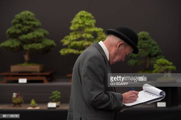 A judge assesses floral display stands on the eve of the Harrogate Spring Flower Show at the Great Yorkshire Showground in Harrogate northern England...