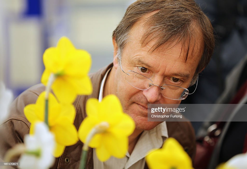 A judge casts his expert eye over daffodils at the Harrogate Spring Flower Show on April 25, 2013 in Harrogate, England. Over 100 nurseries are staging displays of their flowers and plants at the Harrogate Spring Show organised by the north of England Horticultural Society. The premier gardening event of the north attracts thousands of horticulturalists to view it's show gardens and Spring floral displays.