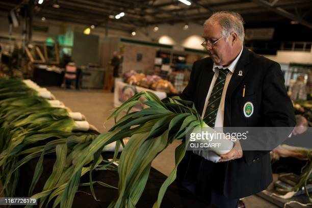 A judge inspects leeks on the first day of the Harrogate Autumn Flower Show held at the Great Yorkshire Showground in Harrogate northern England on...